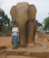 tarini and elephant
